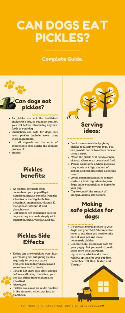can dogs eat pickles infographic