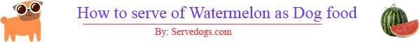 serving ideas of watermelon as dog food