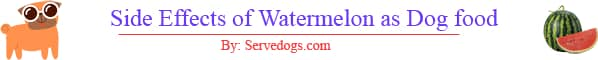 side effects of watermelon for dogs