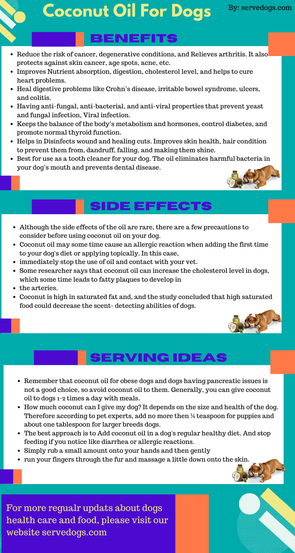 coconut oil for dogs infoghrapic