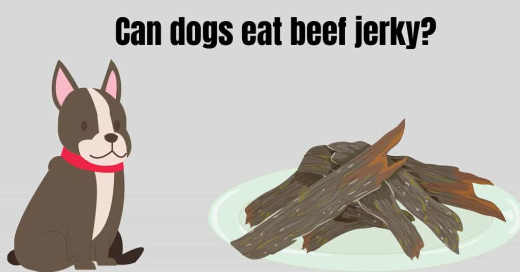 can dogs eat beef jerky?