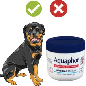 Is Aquaphor Safe for Dogs