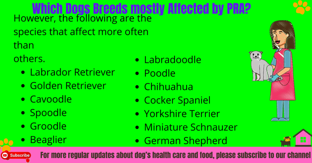 Which Dog Breeds mostly Affected by PRA?