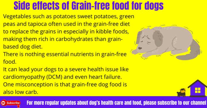 Side effects of Grain-free food for dogs