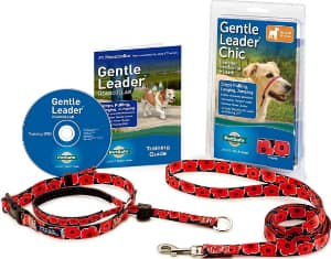 Why is the gentle leader a successful tool for dogs who pull?