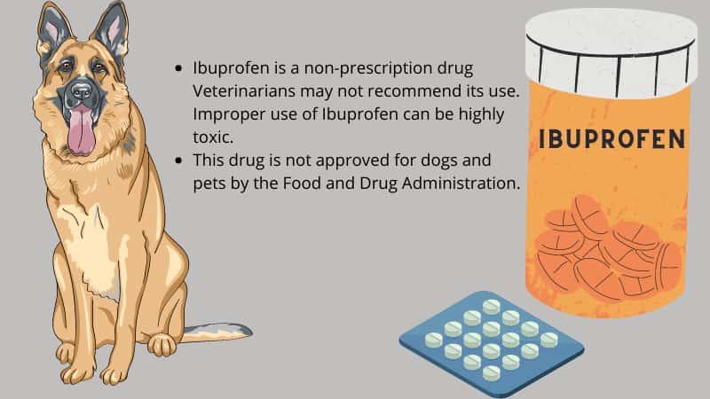 Ibuprofen for dogs