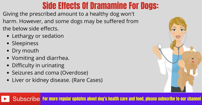 Dramamine side effects for dogs