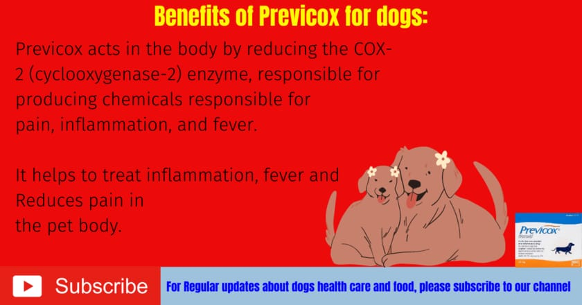 Benefits of Previcox for dogs