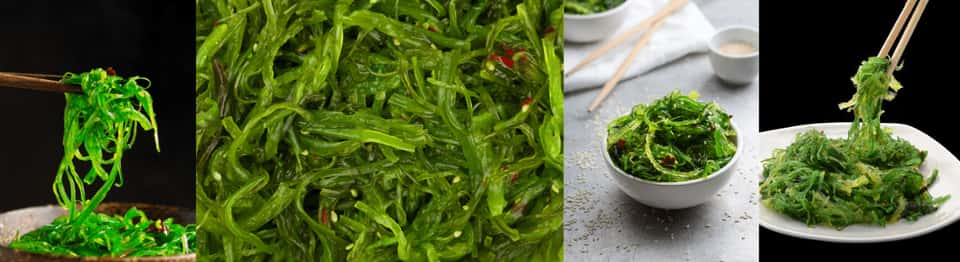 Wakame for dogs