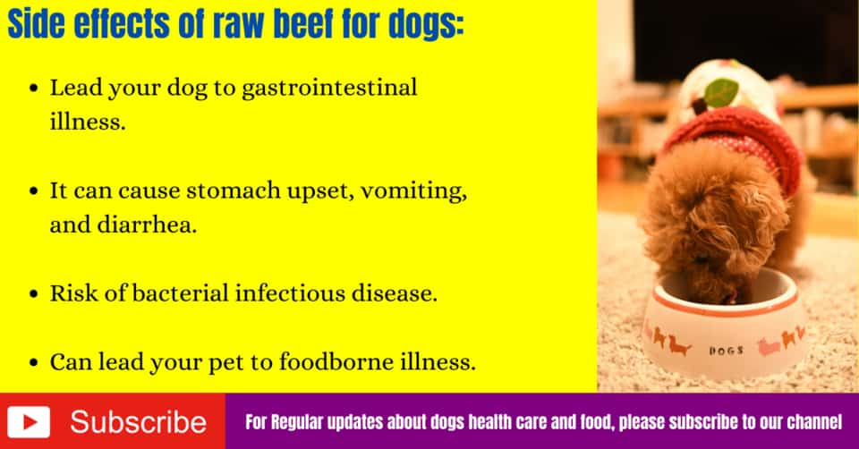 Side effects of raw beef for dogs