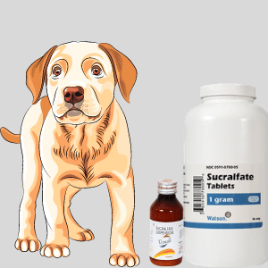 What is sucralfate for dogs?