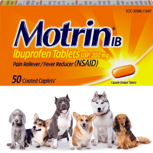 Can dogs have Motrin?