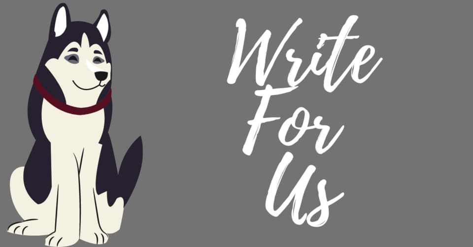 dogs write for us