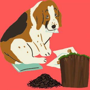 eating dirt make Dog poop black