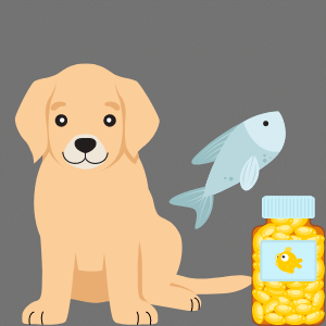 How much fish oil for dogs